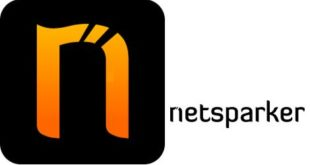 Netsparker Professional 4.6 Free Download