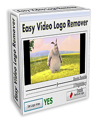 Easy Video Logo Remover 1.4.1 Portable Free Download