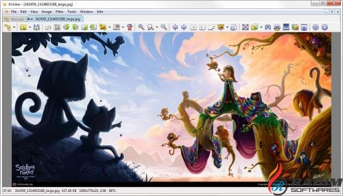 XnView 2.42 Extended Free Download