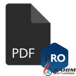 PDF Anti Copy Pro 2.6.4 Portable Free Download