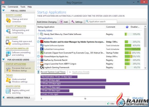Reg Organizer 8.02 Portable Free Download