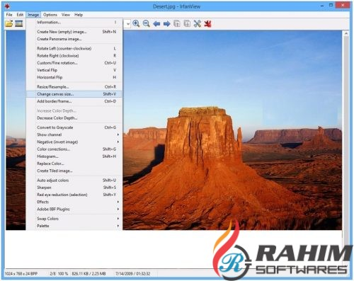 IrfanView 4.44 Portable Free Download