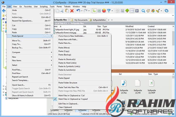 XYplorer Pro 19 Direct Download Link