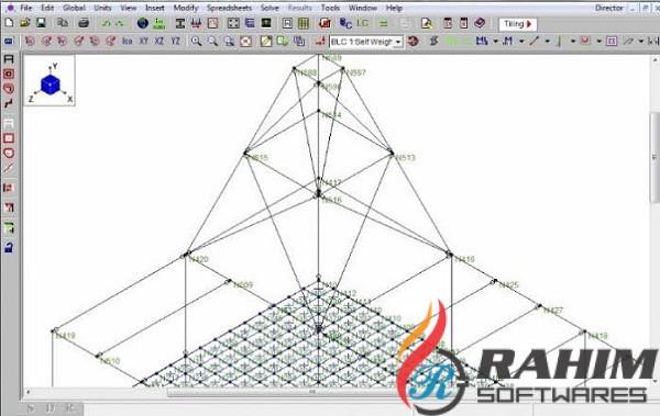 Risa 3d 17 0 4 Free Download 64 Bit