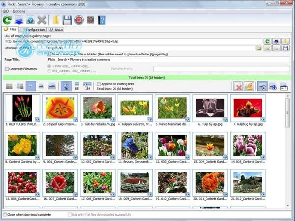 bulk image downloader extension