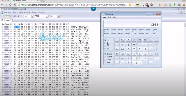 hex editor download