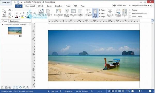 PDF print preview online