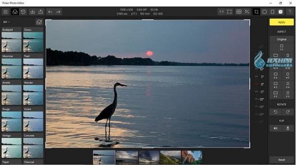 Polarr photo Editor download