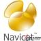 Navicat Premium 12 Free Download